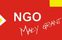 NGO mały grant ikona